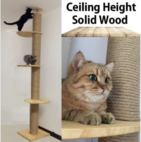 Full Length Floor-to-Ceiling Wooden Cat Climbing Tree