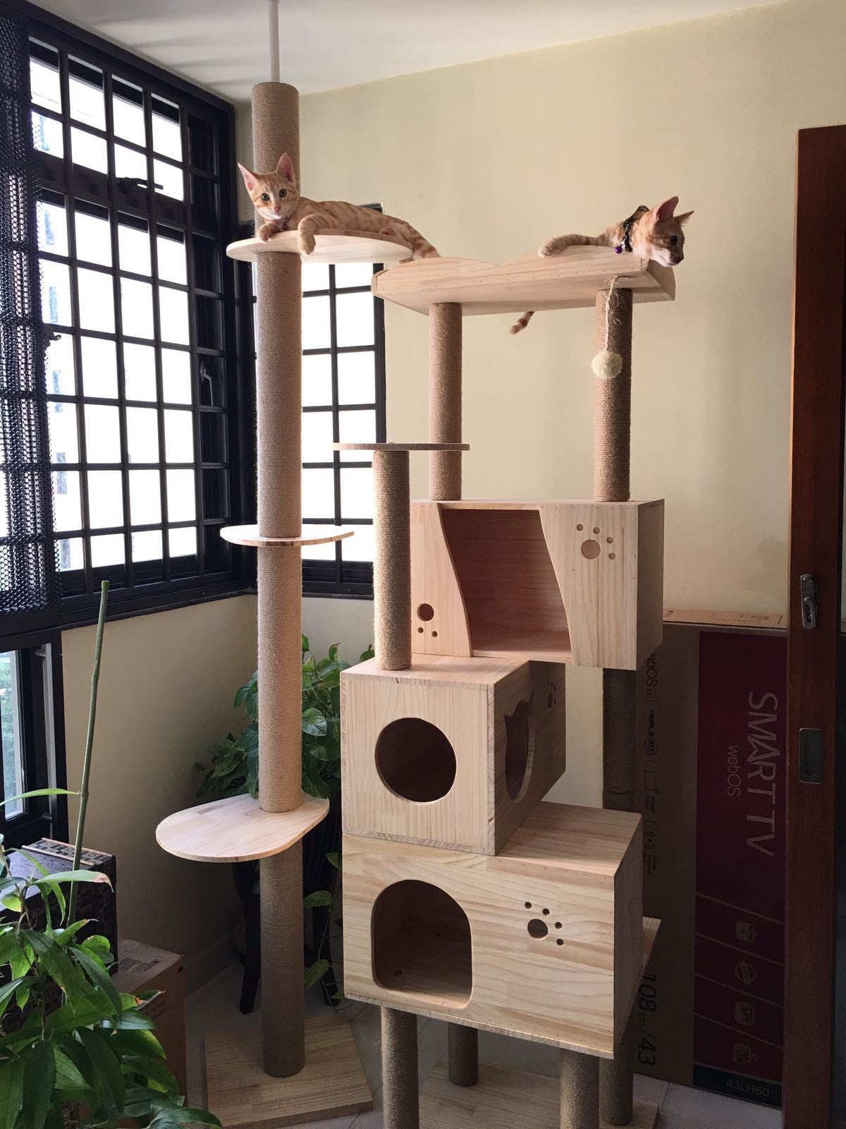 Pvc Pole Deluxe 1 8m Wooden Cat Furniture W Triple Houses