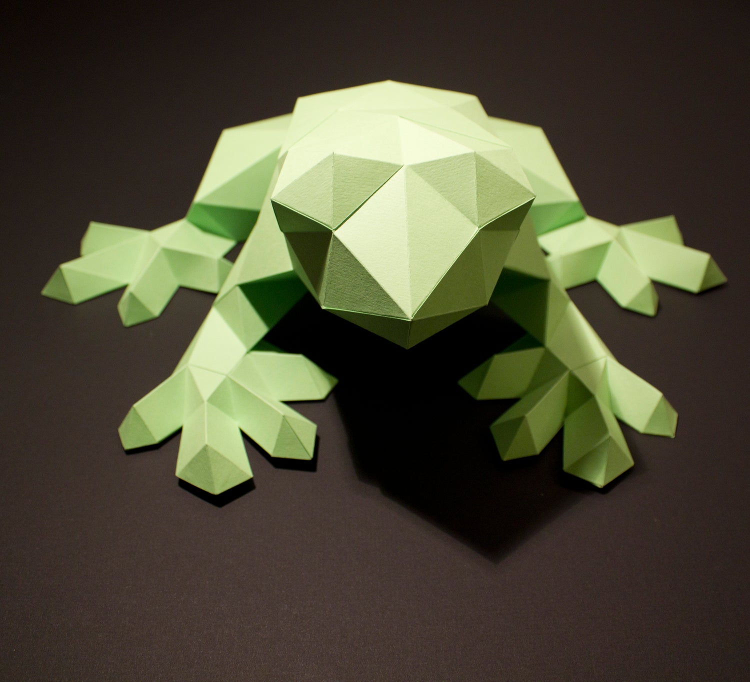 Darius the Frog | DIY Paper Craft Animal Kit