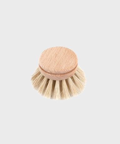 Everyday Dish Brush Refill  |  Beech - SALT Shop