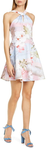Ted Baker London Umerta Floral Skater Dress, Size 2, Light Blue