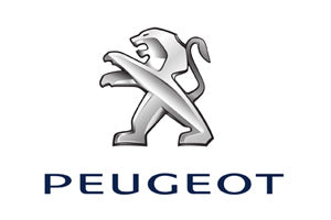 Peugeot Car Body Panels
