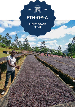 Ethiopia Guji Mountain Water Decaf