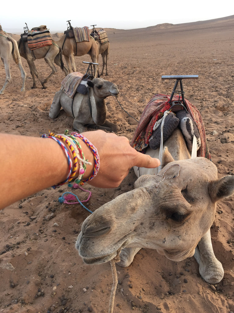 Camel Ride in the Desert - bucket bracelets - 4