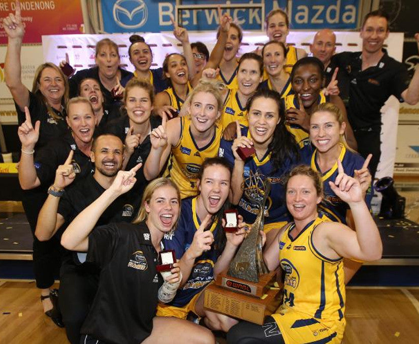 WNBL To Return To National Television In Season 2017-2018