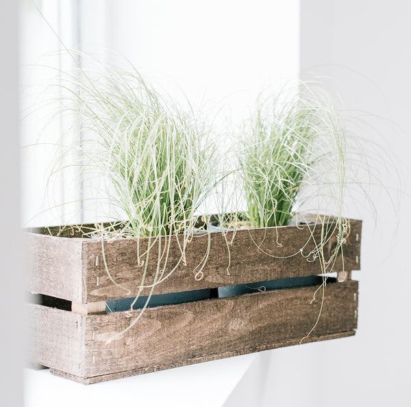 A Rustic Vintage Fruit Apple Crate style Storage Box / Kitchen Herb Garden