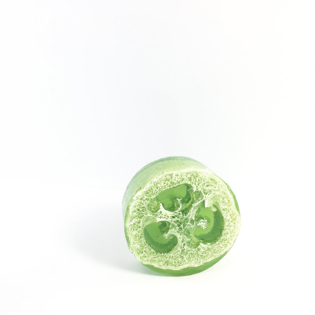 Mint & Eucalyptus Loofah Soap Bar