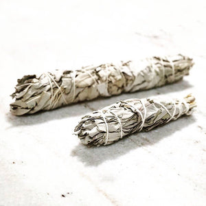 Organic White Sage Smudge Stick