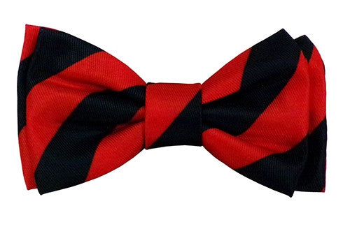 Bow Tie - Red/Navy - Alfred