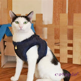 Caspia Cat Harness