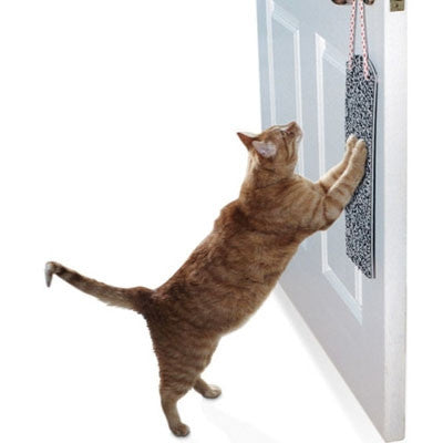 Cat Scratch Pad - Open Door