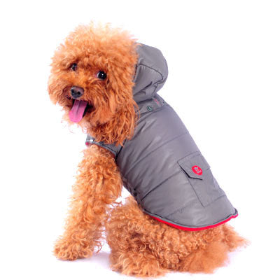 Dashing Dog Parka with Detachable Hoodie - Silver/Grey