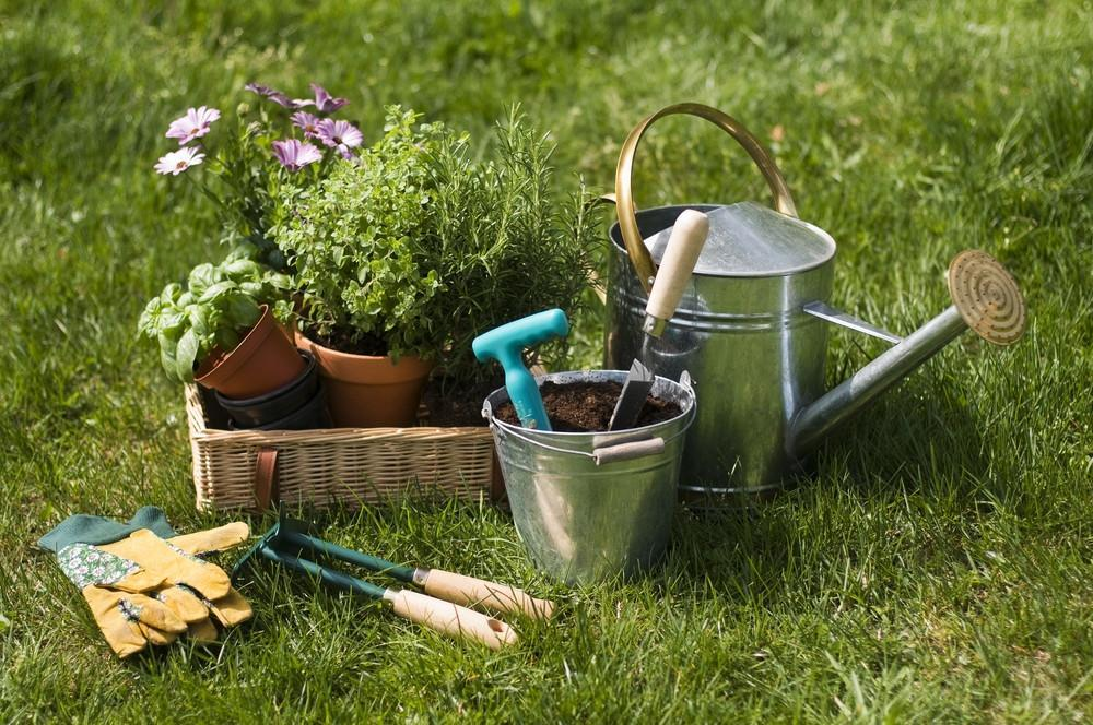 Garden Gifts & Supplies