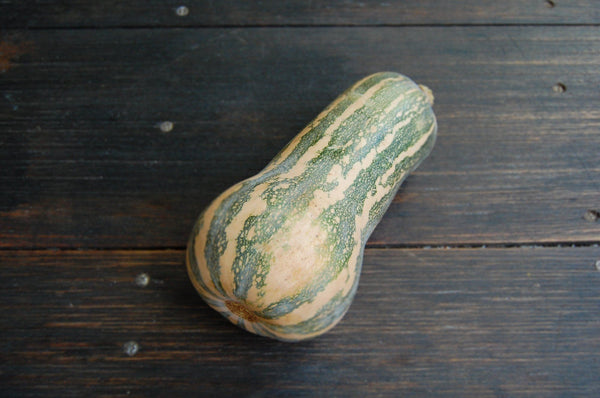 Pumpkin Barbera (cross butternut & jap) - 1kg