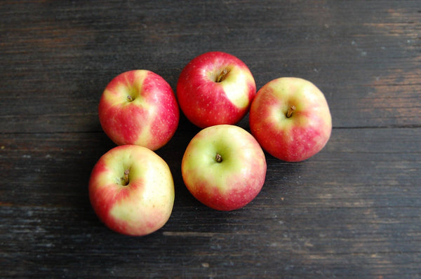 Apple, Pink Lady (Rosy Glow)