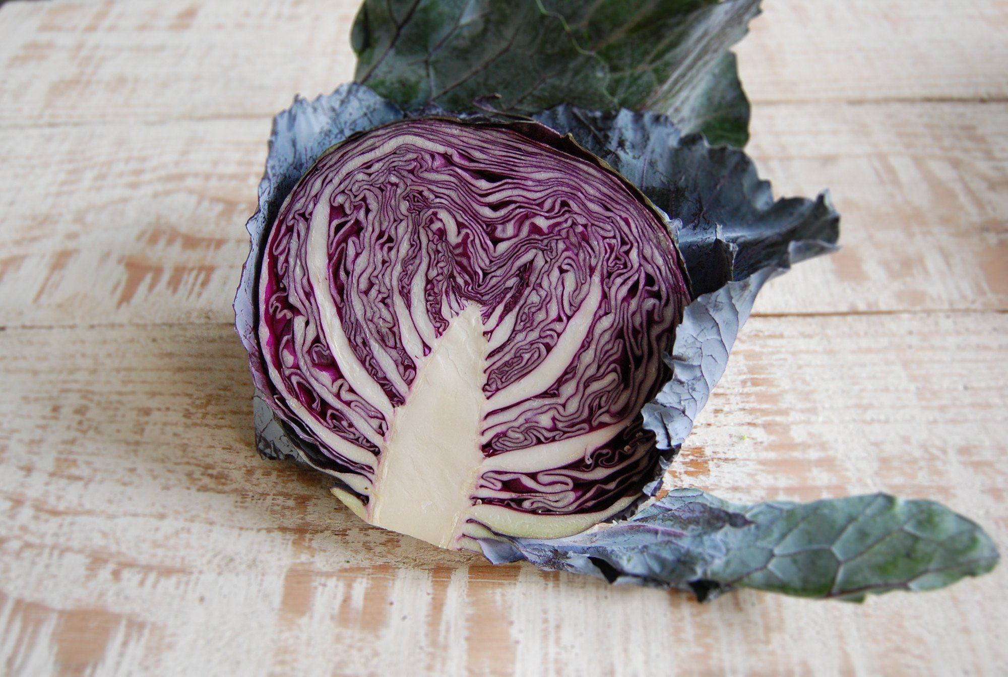 Cabbage, Red - half