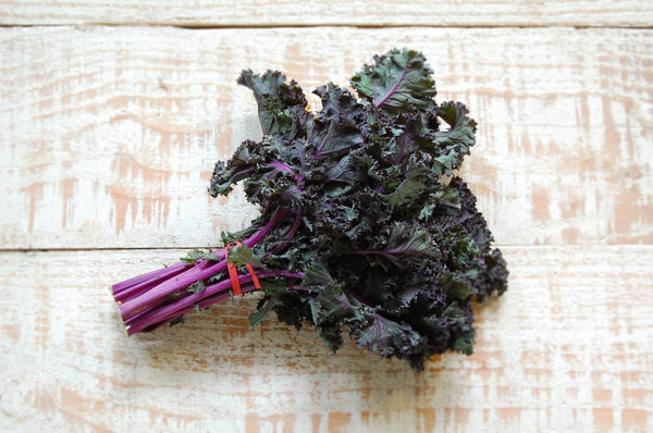 Kale, Red Curly