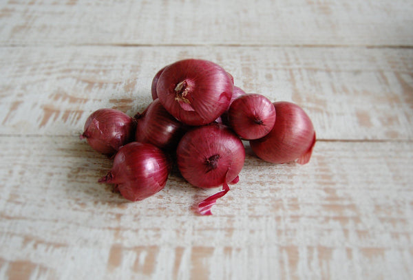 Onions, Red Spanish (biodynamic)