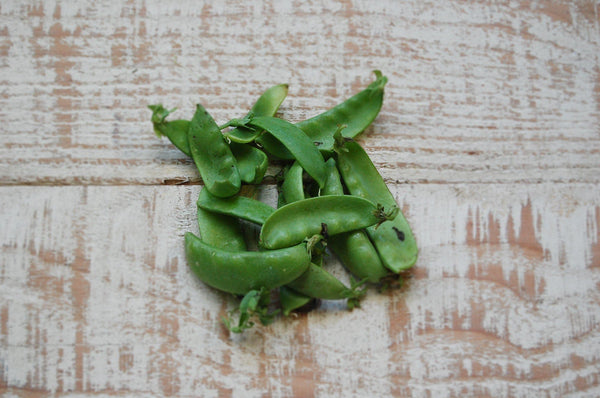 Snow Peas (biodynamic)