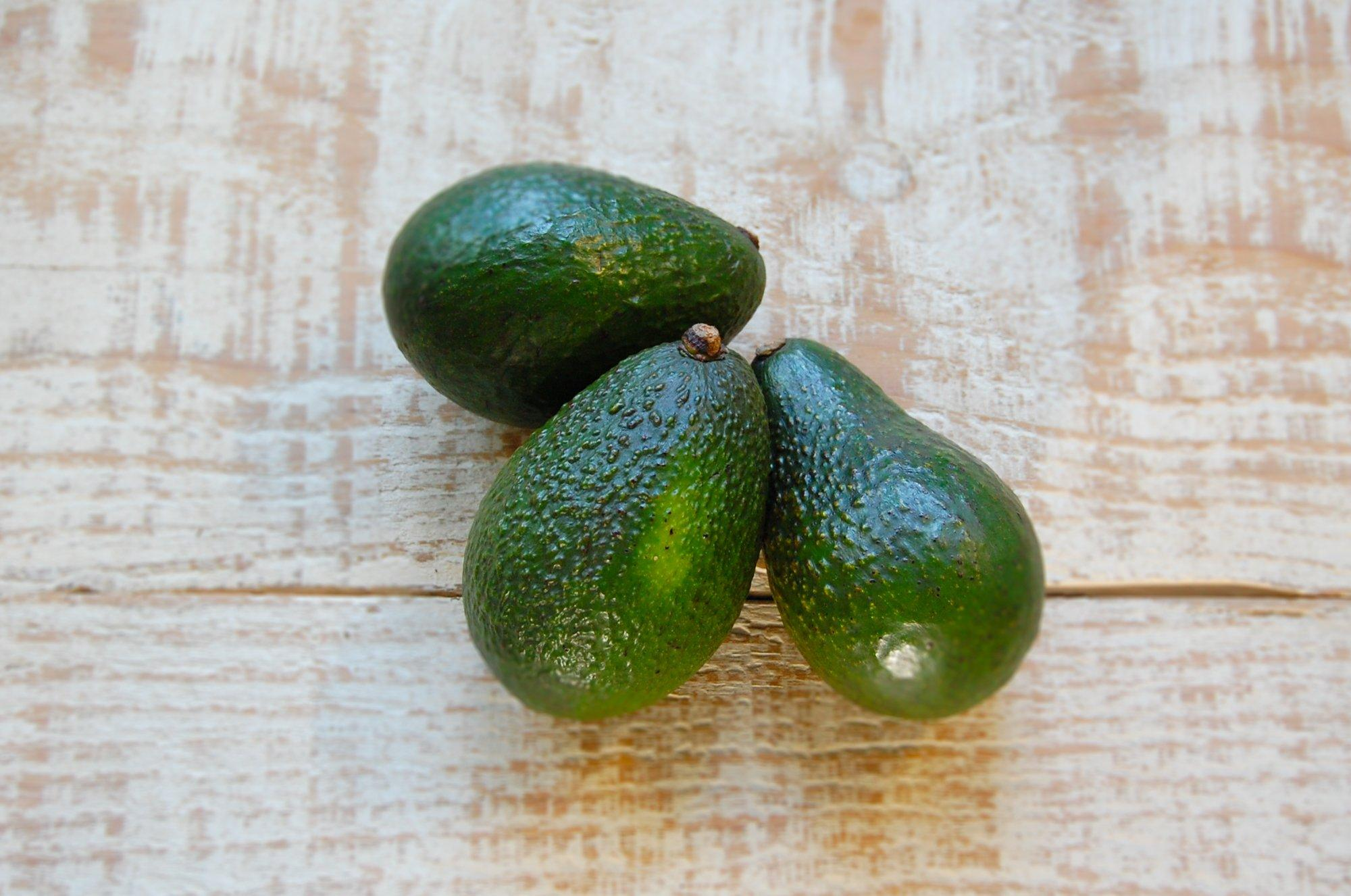 Avocado, Small 3 for