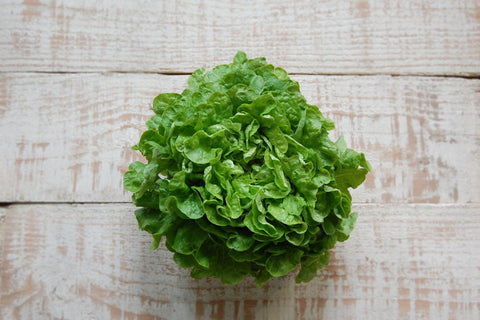 Lettuce, Variety (Red & Green) Oak