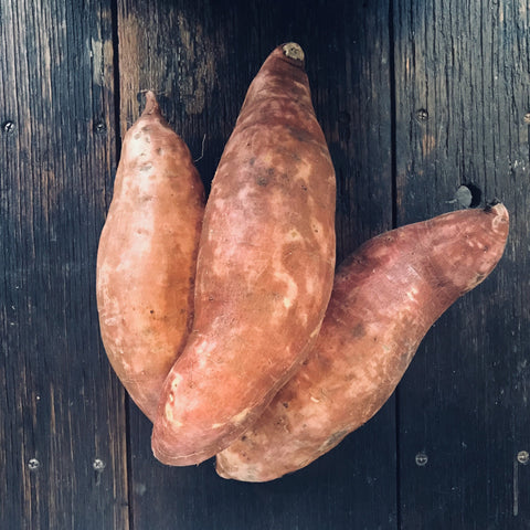 Sweet Potato, Large Gold