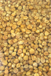 Channadal Spicy 300 gms