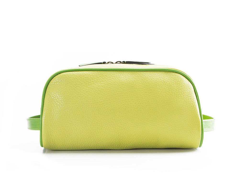 Montagnard leather day bag in light green and green patina