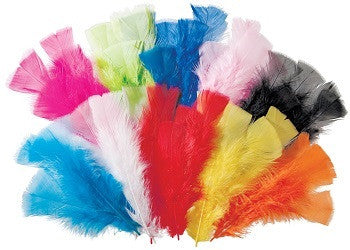 Feathers Pack of 60g Assorted Colours - FT102-AS - Collins Craft and School Supplies