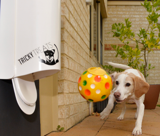 Tricky Treats – Dog Treat Dispenser