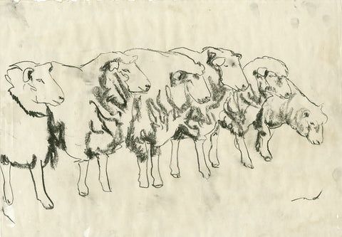 Sheep line sketch right