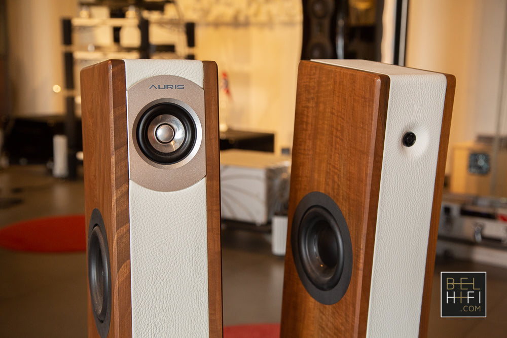 Auris Poison 3 Loudspeakers (Pair)