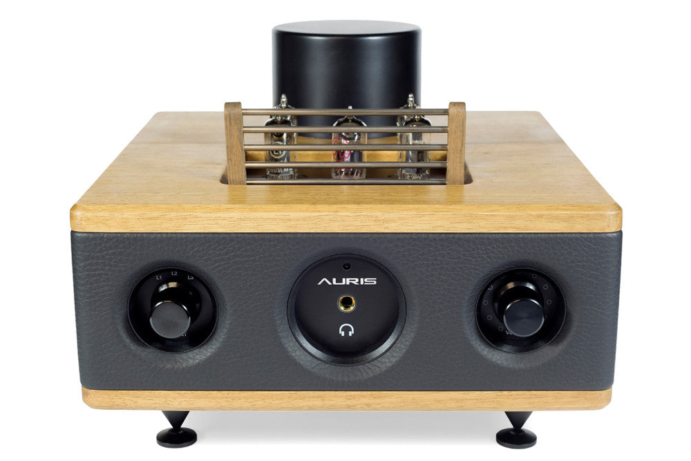 HA2 SE Headphone Amplifier