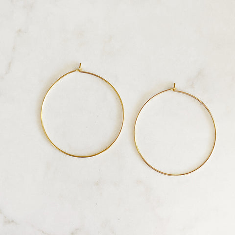 Hoop & Switch Earrings