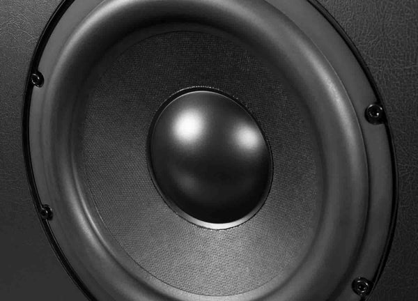 Powerful and Flexible Subwoofer