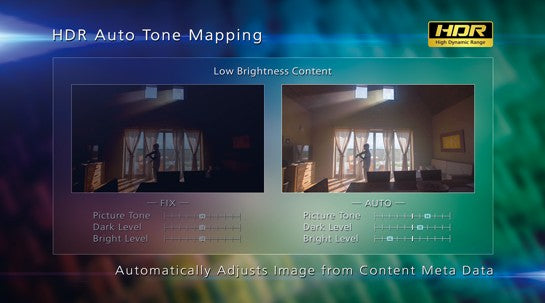 Automatic Adjustment with Auto Tone Mapping