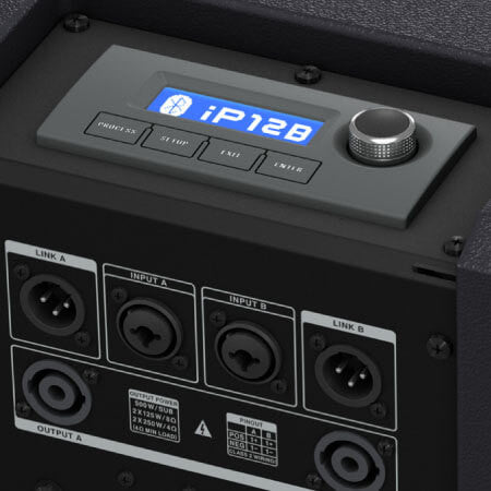 iP12B Rreal Panel DSP