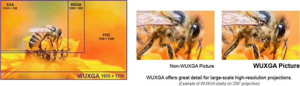 WUXGA Resolution for Enhanced Detail and Expanded Content