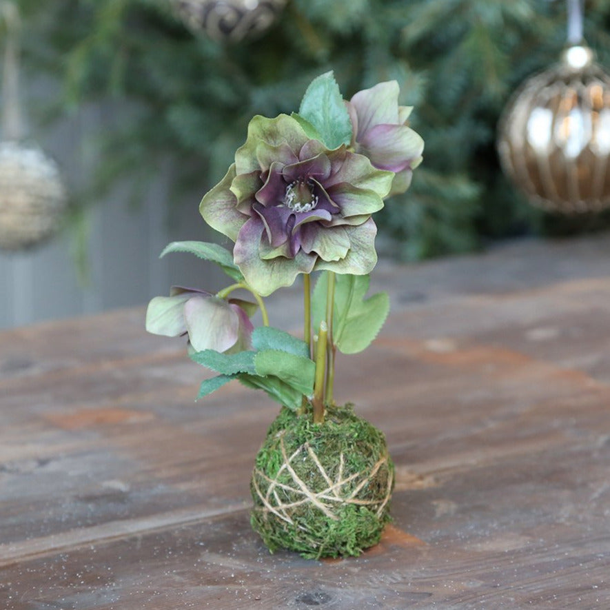FAUX HELLEBORES WITH MOSS BALL