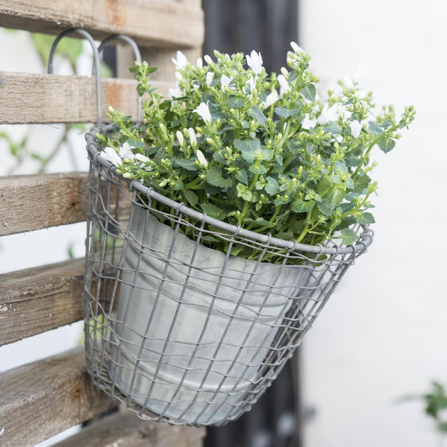 WIRE HANGING BASKET