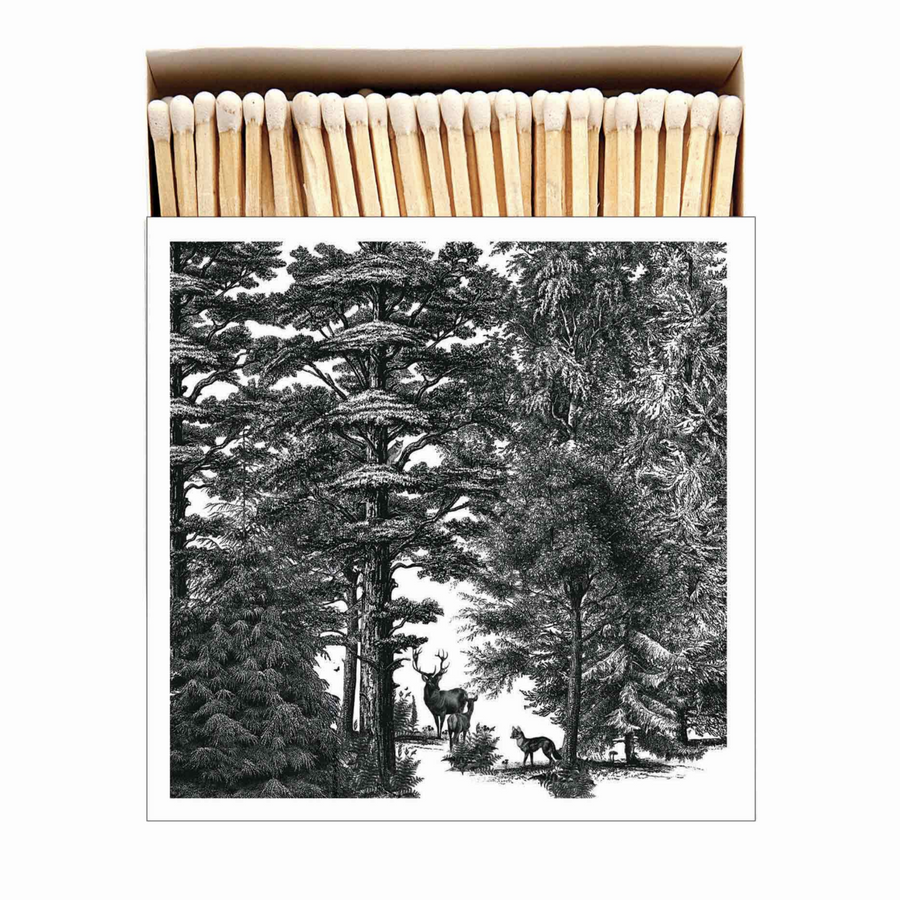 MATCHES | ENCHANTED FOREST