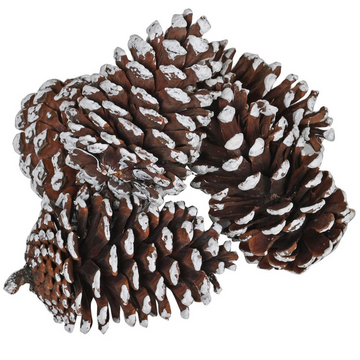 BAG OF WHITE TIPPED PINE CONES