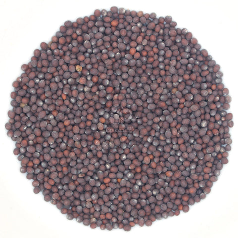 Whole Black Mustard Seed for sale UK