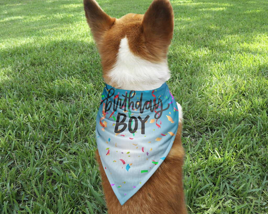 Birthday Boy Dog Bandana - Potter's Printing
