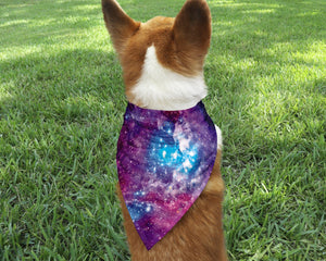 Galaxy Dog Bandana - Potter's Printing