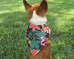 Hawaiian Dog Bandana - Potter's Printing