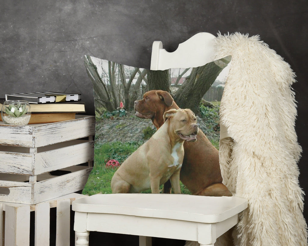 Custom Photo Throw Pillow - Potter's Printing