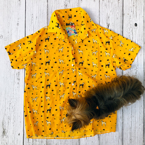 Pawtastic Top