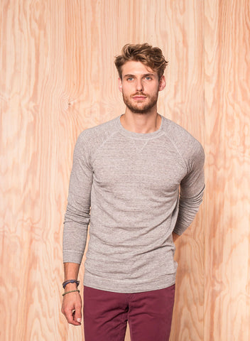 Longsleeve grau - Colours & Sons