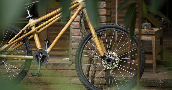 What's stopping the bamboo bike from shooting into the mainstream?